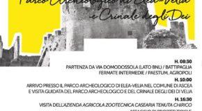 Valentina Del Pizzo, Archeologa e Presidente del circolo Arci Aut Aut