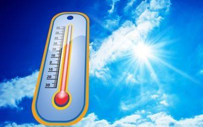 Caldo record: scatta l'allarme e la CRI attiva un numero verde h24